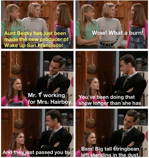 burn full house what the hell kimmie gibbler - 8203885824