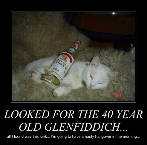 LOOKED FOR THE 40 YEAR OLD GLENFIDDICH...