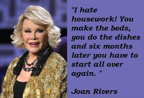 celeb funny housework quotes - 8205955072