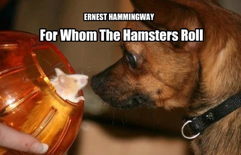 For Whom The Hamsters Roll ERNEST HAMMINGWAY