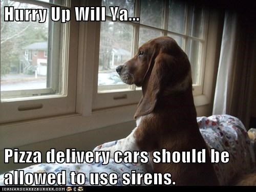 Hurry Up Will Ya... Pizza delivery cars should be allowed to use sirens.