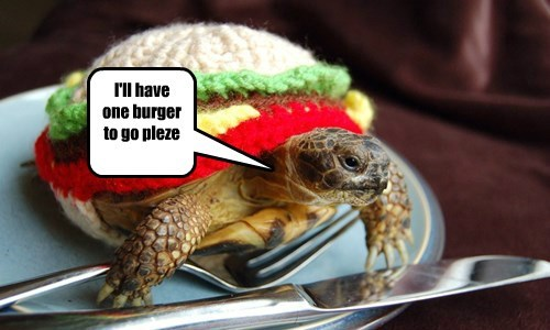 turtles burgers funny - 8208470016