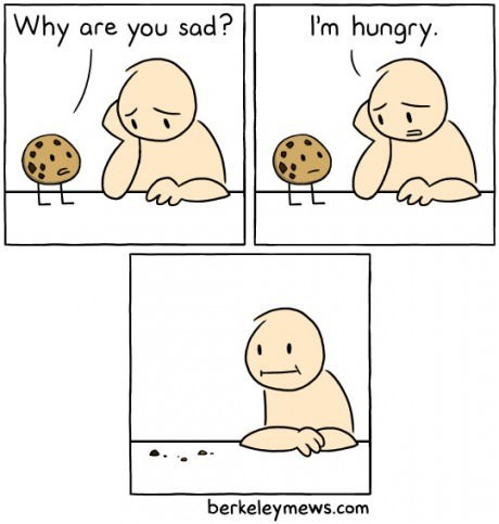 hunger,cookies,web comics