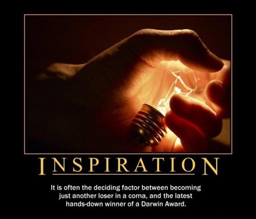 inspiration bad ideas idiots funny - 8208932352