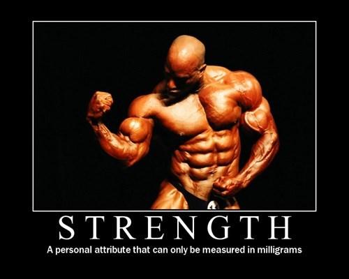 strength idiots funny - 8208988672