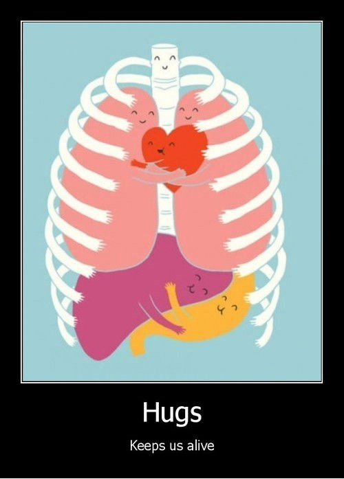 anatomy cute hugs organs funny - 8209076736