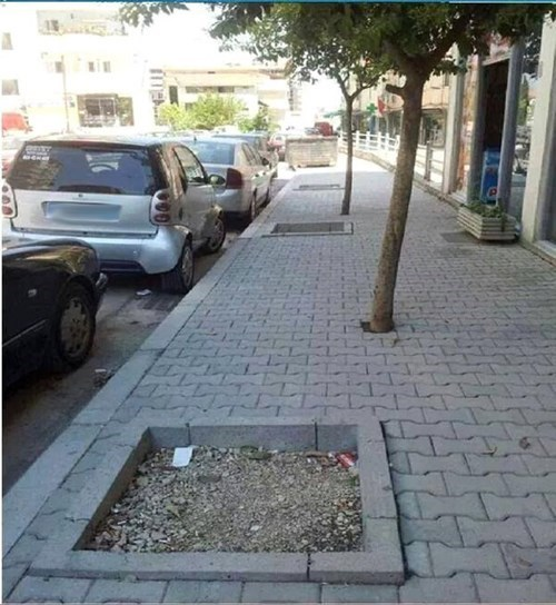 monday thru friday,FAIL,you had one job,tree,sidewalk
