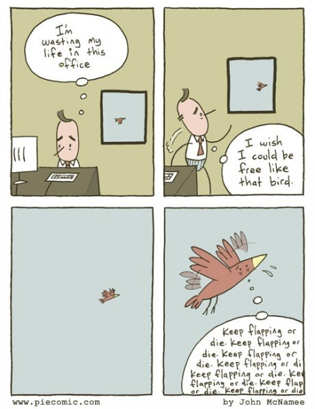 nature birds sad but true Office web comics - 8209932288