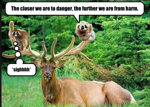 Cheezburger Image 8210063872