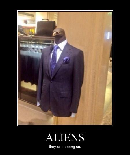 hawk Aliens wtf funny - 8210096640