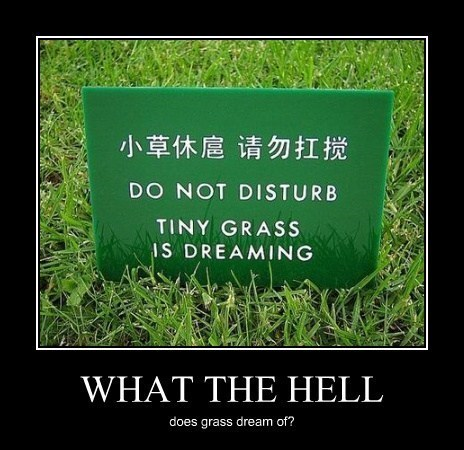 tiny Disturb dreaming grass funny - 8210098432
