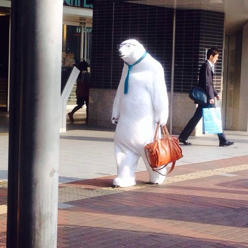 costume,poorly dressed,polar bear,g rated