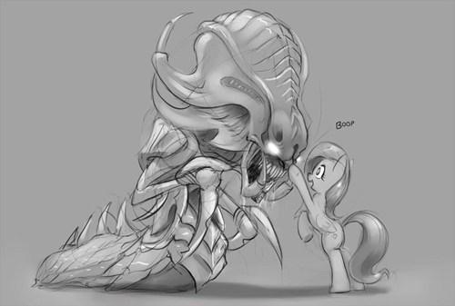 starcraft Fan Art fluttershy - 8210496768
