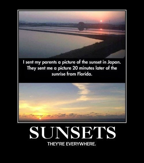 florida Japan funny sunset parents - 8211214848