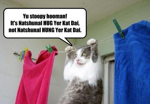 Yu stoopy hooman! It's Natshunal HUG Yer Kat Dai, not Natshunal HUNG Yer Kat Dai.