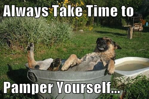 pamper,dogs,baths