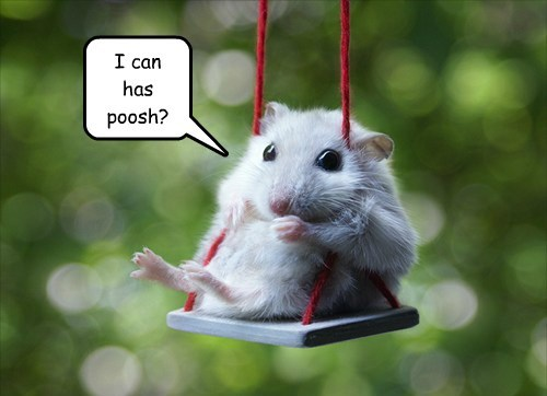cute swings mice - 8212205312