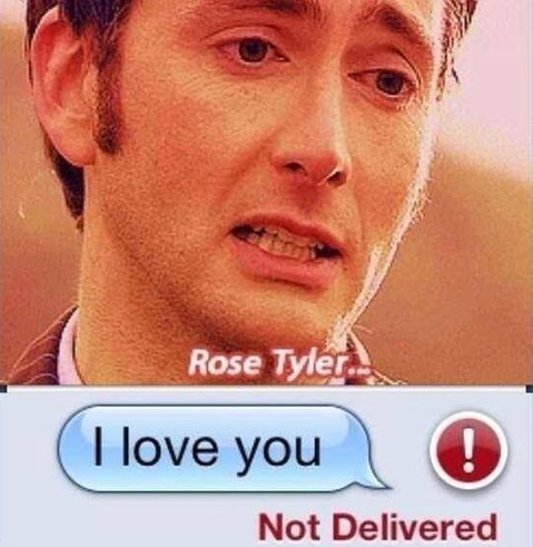 rose tyler,10th doctor