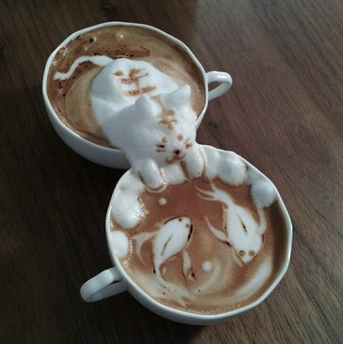 foam art coffee Cats - 8213601792