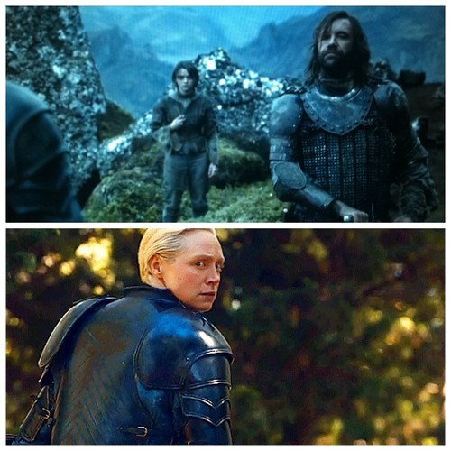 brienne of tarth the hound Game of Thrones arya stark season 4 - 8216870912