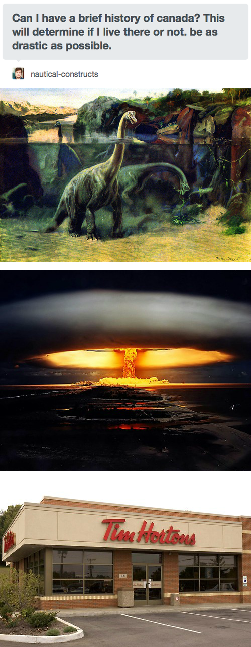 Canada tim hortons tumblr dinosaurs - 8217060096