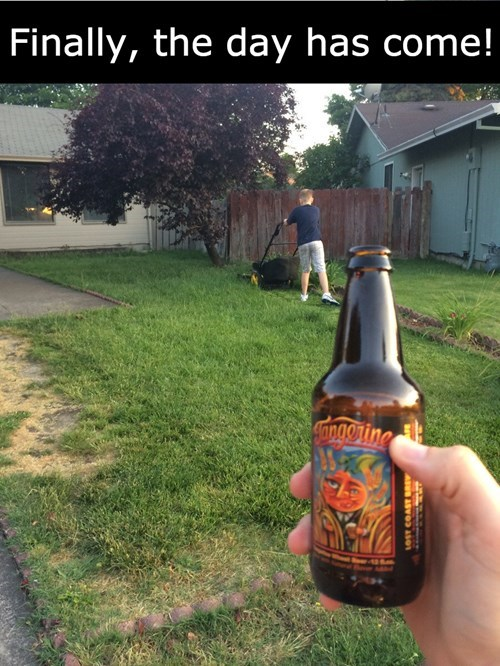 beer,mowing the lawn,parenting,son,g rated