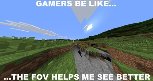 gamers minecraft FOV