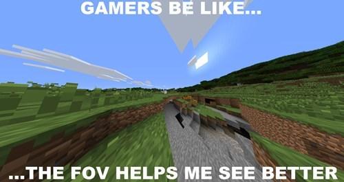 gamers minecraft FOV - 8217584384