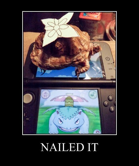 Pokémon venusaur turtle funny - 8218115328