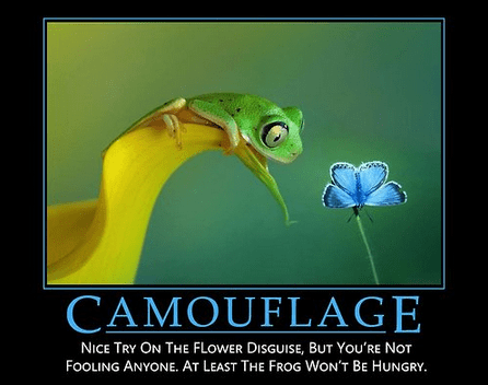 nature Flower camouflage frog - 8218116096