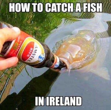 wtf fishing Ireland funny after 12 - 8218213632
