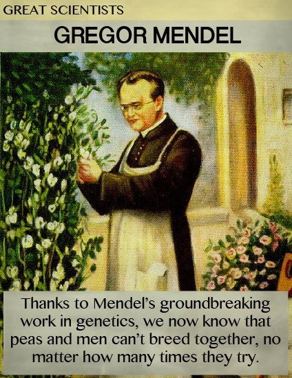 Gregor Mendel,genetic modification,science,funny