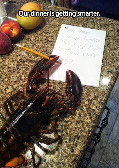 lobster letters - 8218362880