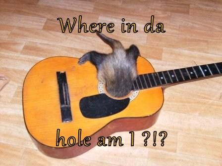 Where in da hole am I ?!?