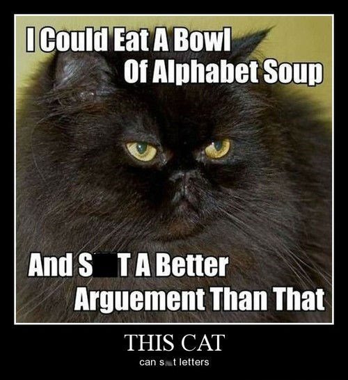 poop argument angry Cats funny - 8219216384