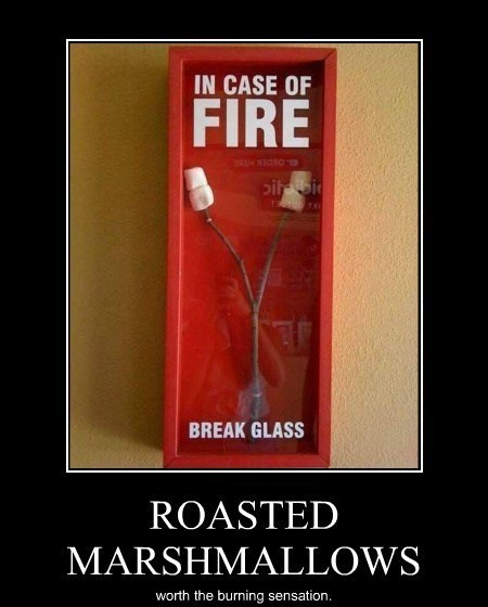 roasted marshmallow fire funny - 8219217152