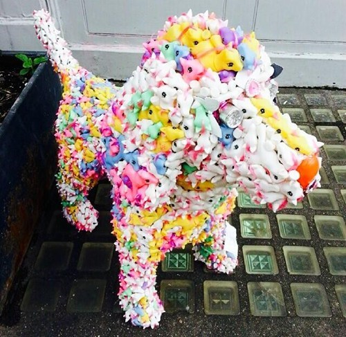 dogs craft pony - 8220006400