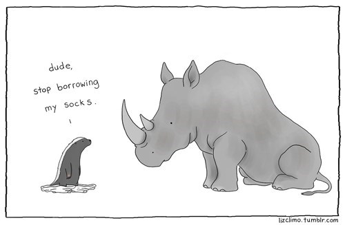 rhino poorly dressed socks otter webcomics