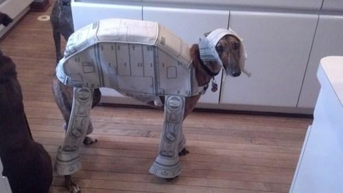 costume dogs star wars - 8220425216