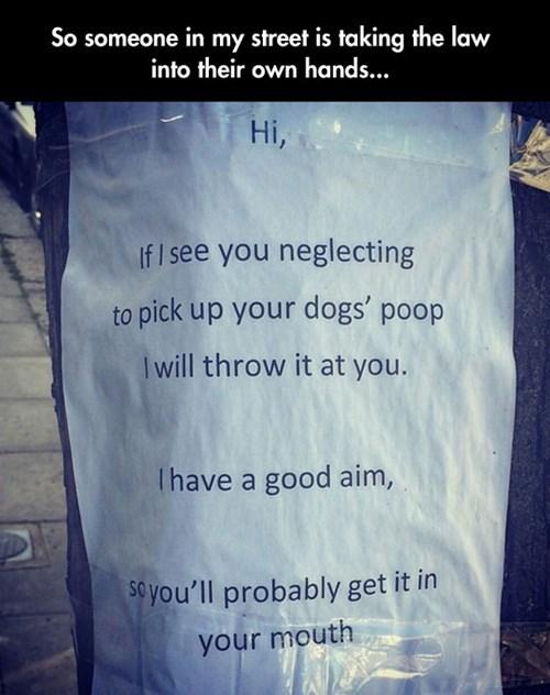 dogs,poop