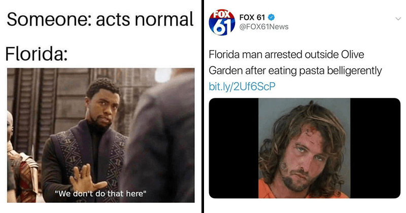 Florida Man, Florida people, florida headlines, florida memes, crazy people, olive garden mug shot, pasta, florida man pasta | black panther Someone: acts normal Florida don't do here | FOX 61 News Florida man arrested outside Olive Garden after eating pasta belligerently