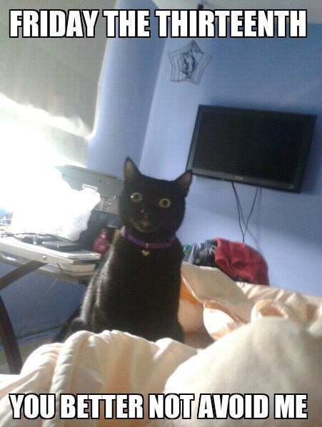 black cats friday the 13th - 8221530368