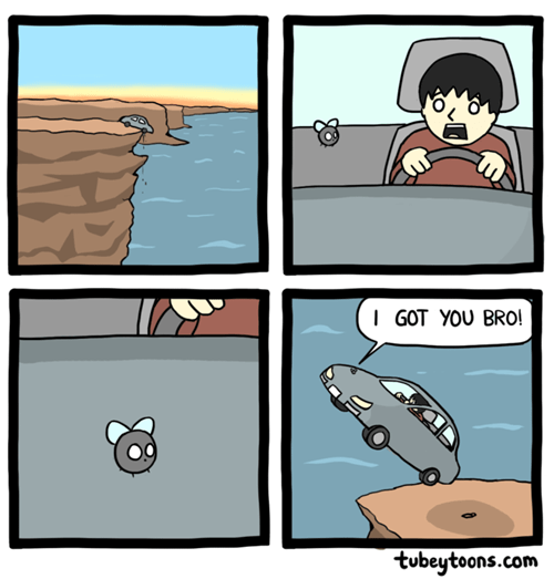 bros fly web comics