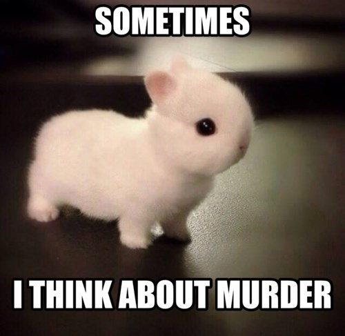 bunnies cute murder funny famously freaky - 8221678336