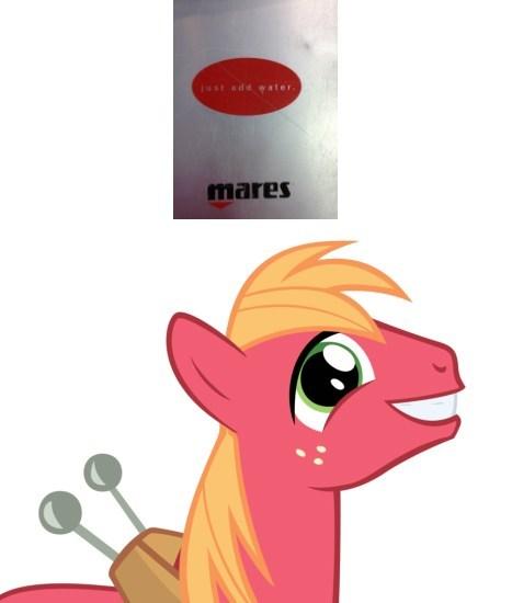 Big Macintosh scuba ponies in real life - 8221892096
