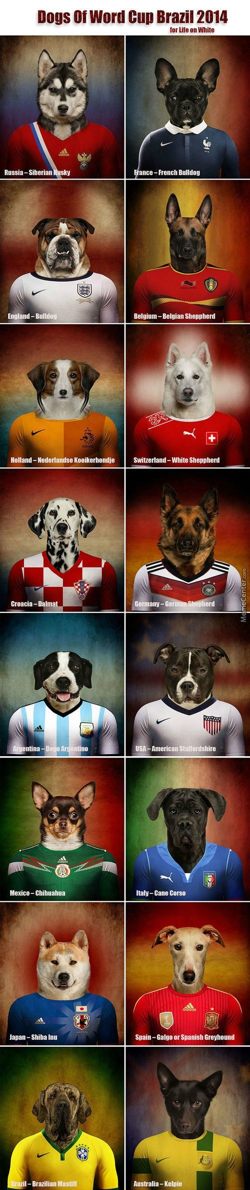 dogs funny world cup - 8222470144