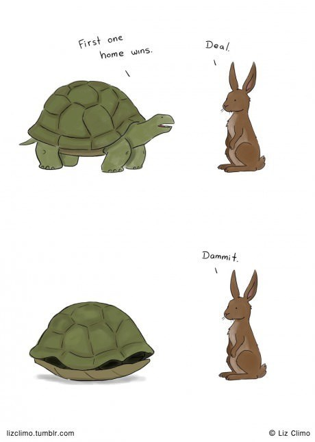 rabbits turtles web comics - 8223628544