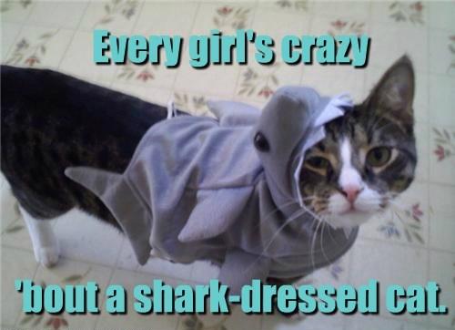 costume puns shark - 8223770368