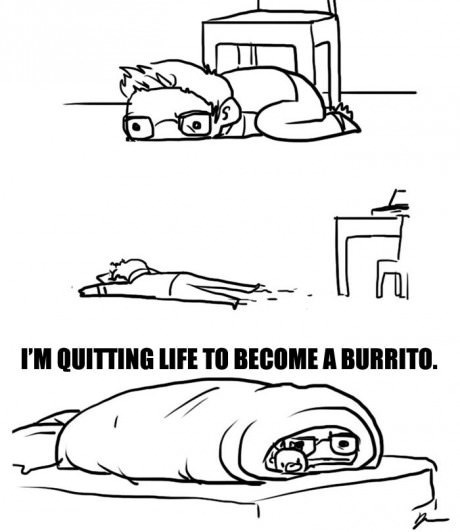 burritos,sick truth,web comics