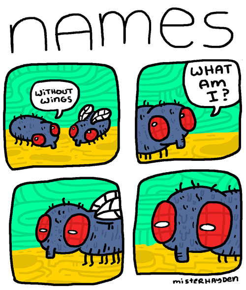 flies,mindwarp,names,web comics